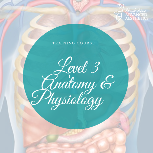 Level 3 Anatomy and Physiology Training Course