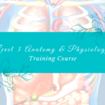 Level 3 Anatomy & Physiology