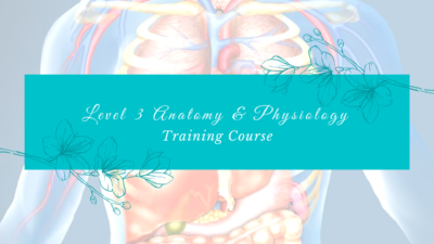 Anatomy and Physiology Training Course